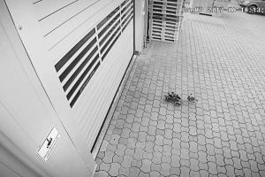 Інтелектуальні високошвидкісні ворота EFAFLEX